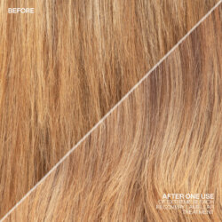 Redken-2020-Extreme-Bleach-Recovery-Social-Post-6